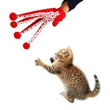 cat food online